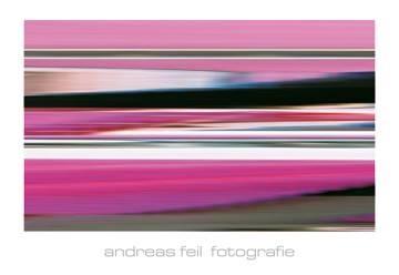 Reprodukce obrazu 138 x 95 / Fotografie III ( Feil Andreas )