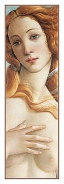 35x100 | Birth of Venus ( Botticelli Sandro )