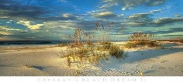 122x56 | Beach Dream II ( Cavanah Doug )