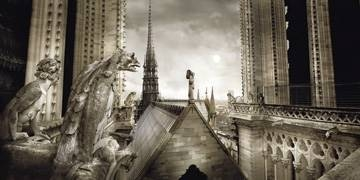 Reprodukce obrazu 100 x 50 / Paris-Gargouilles de Notre Dame ( Rey-Gorrez Stéphane ) + záruka 3 roky