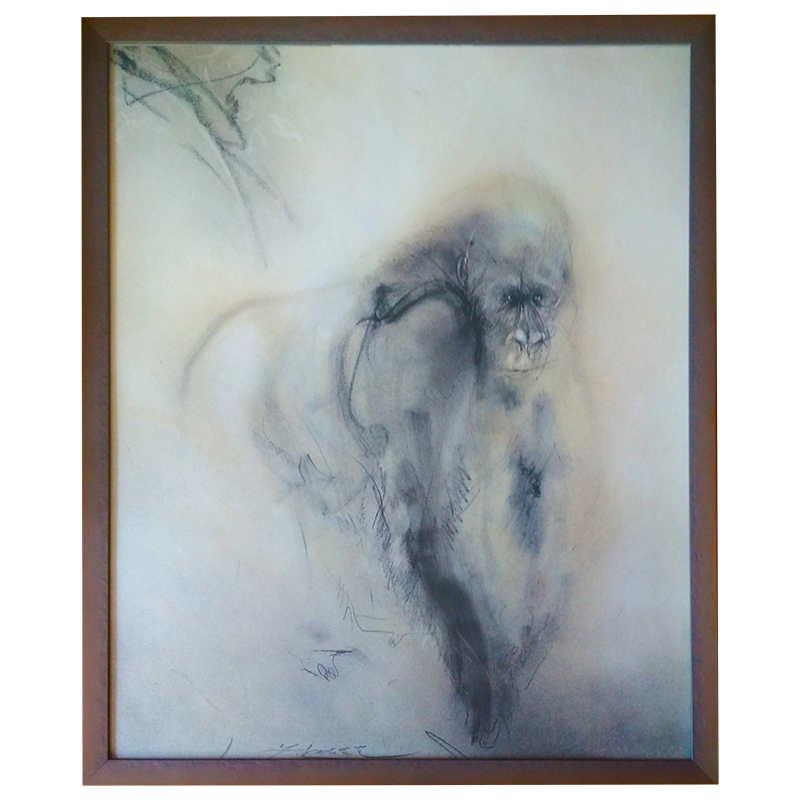 Gorila | Kuklík | 50x60 cm (Zarámovaný obraz)